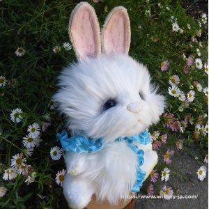 画像4: 2021年新作☆ クレメンス社  ウサギのウィルコ 18cm   12番