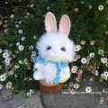 2021年新作☆ クレメンス社  ウサギのウィルコ 18cm   12番
